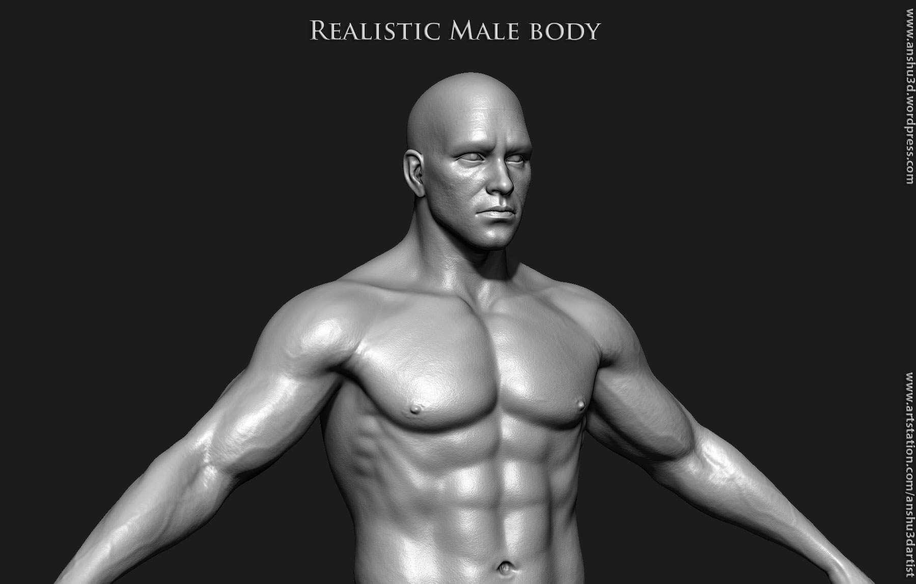 Realistic Human Male Body 3D Model