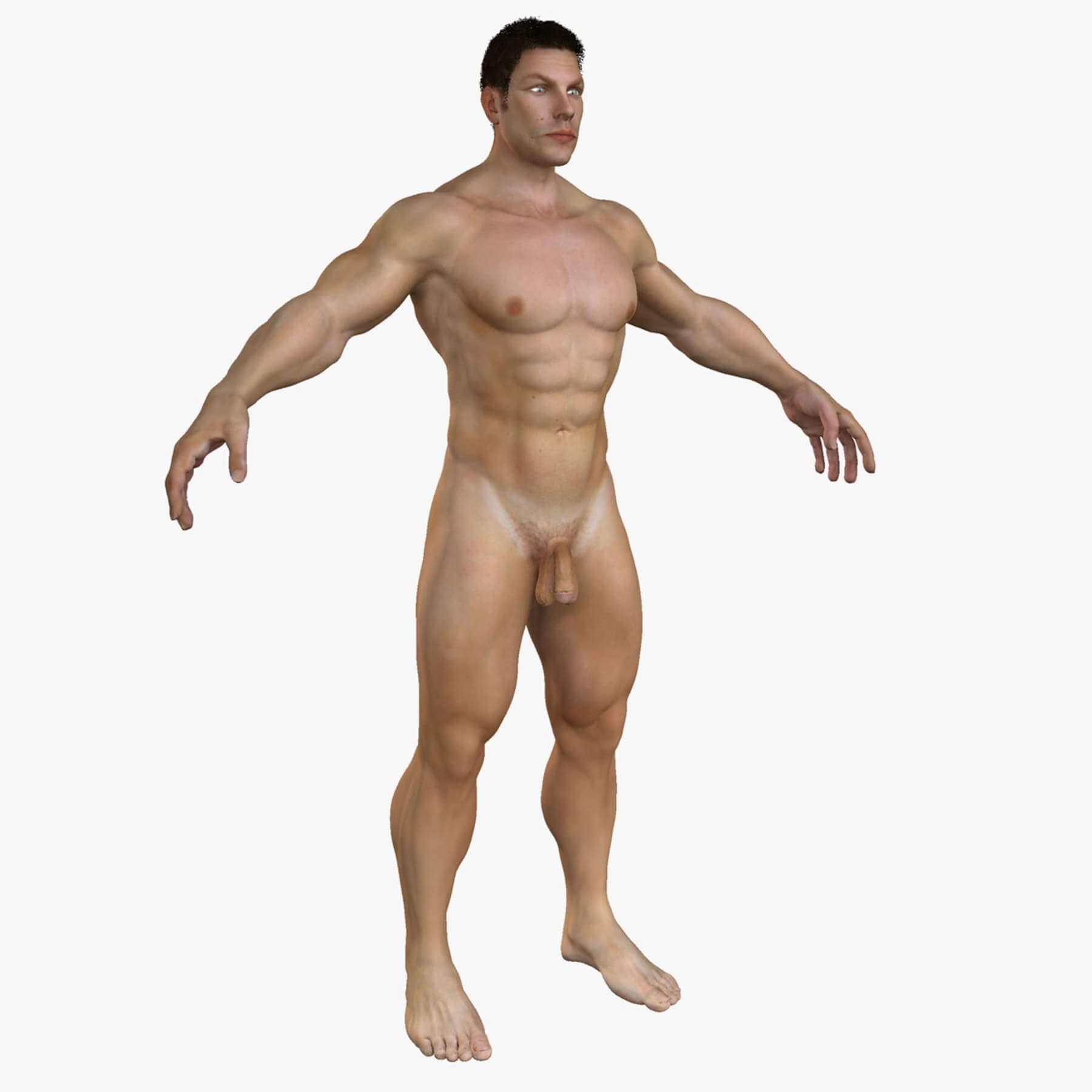 Male Full Body Anatomy 3d Model