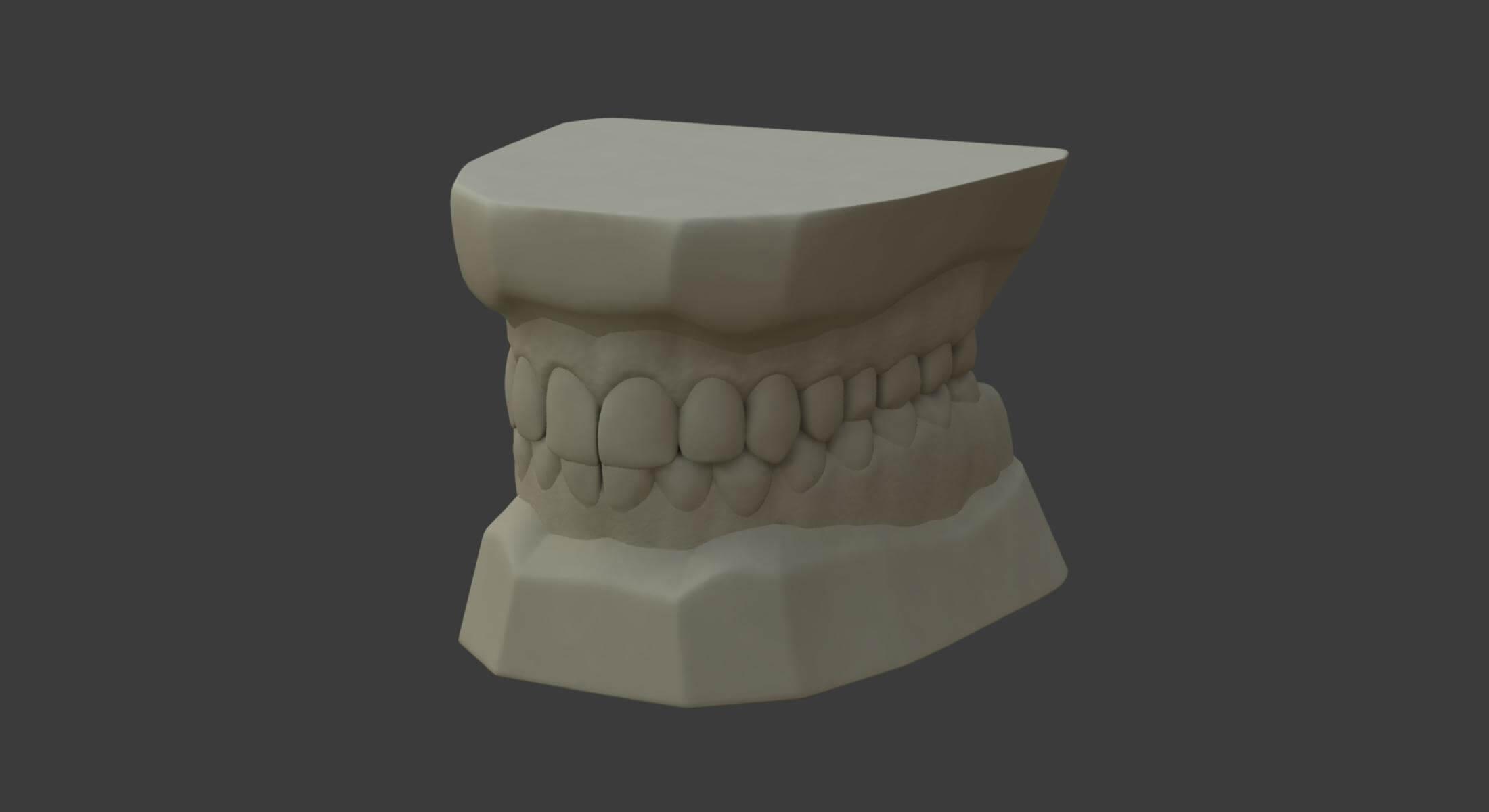 Teeth Mold 3D Model