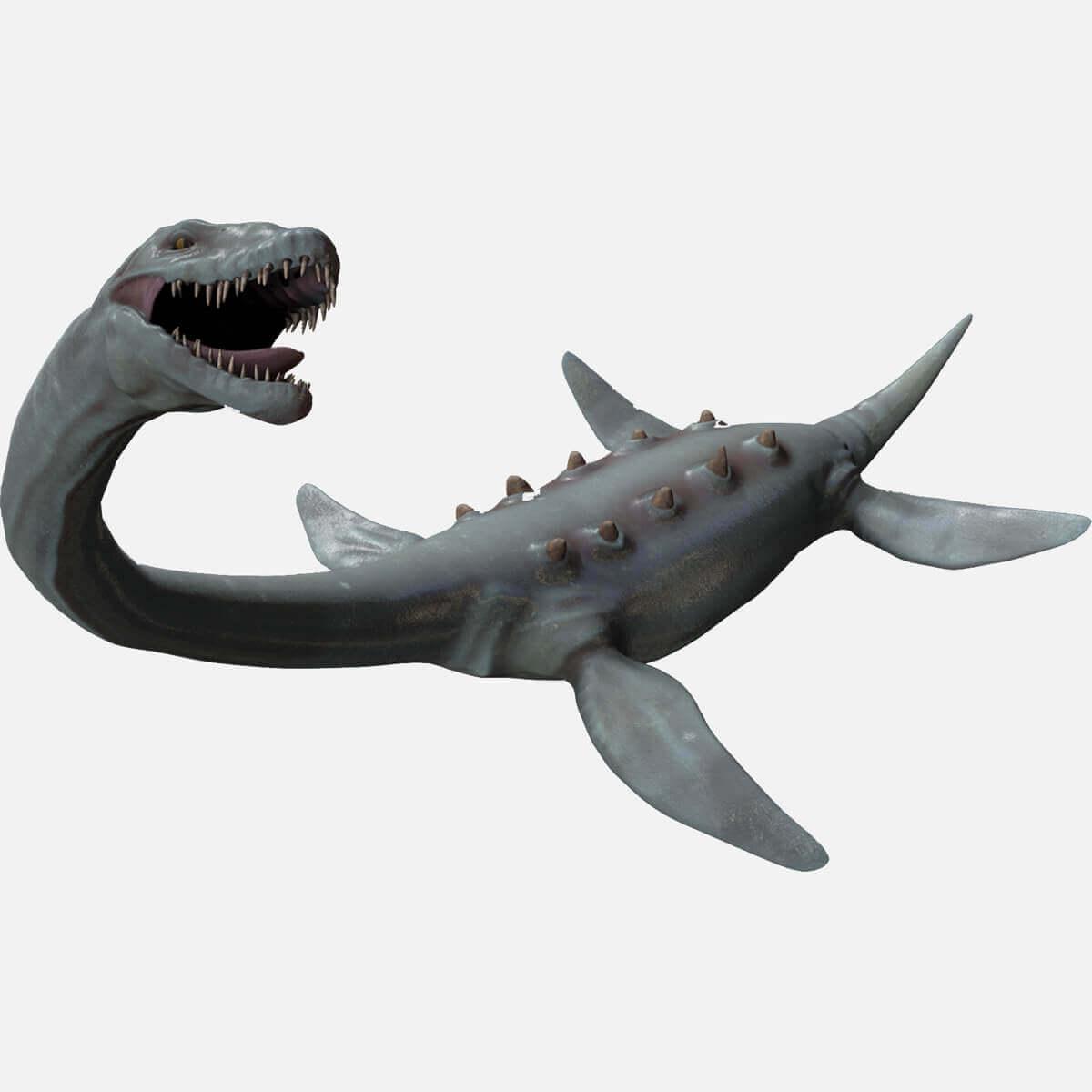 elasmosaurus platyurus 3d model