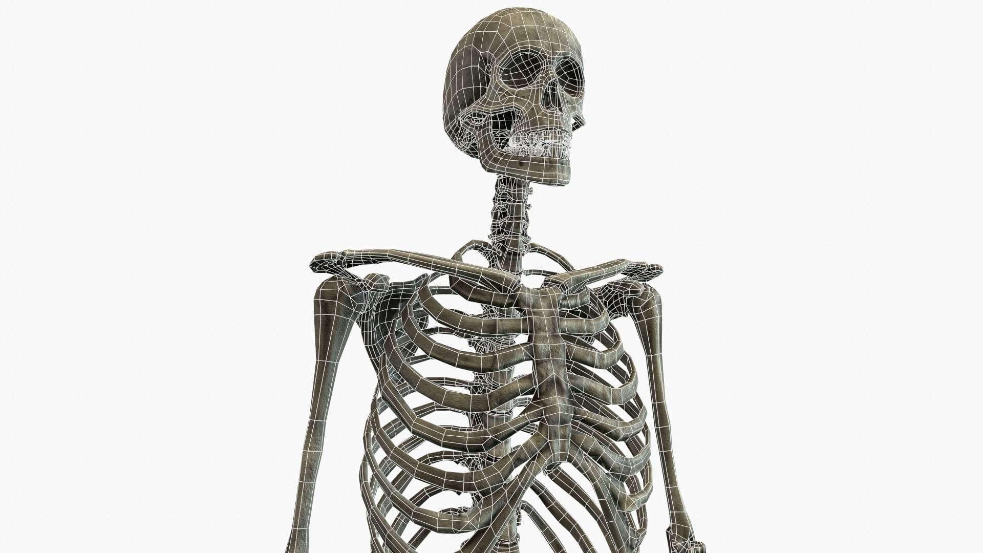 в свердловской области скелет с тремя фотографиями все-таки каждой девушке