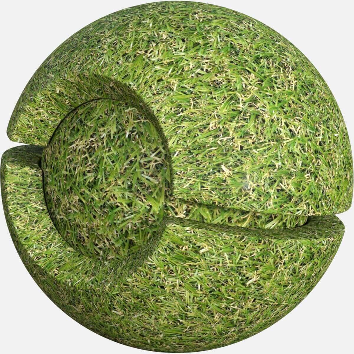 Lawn Grass Seamless Texture