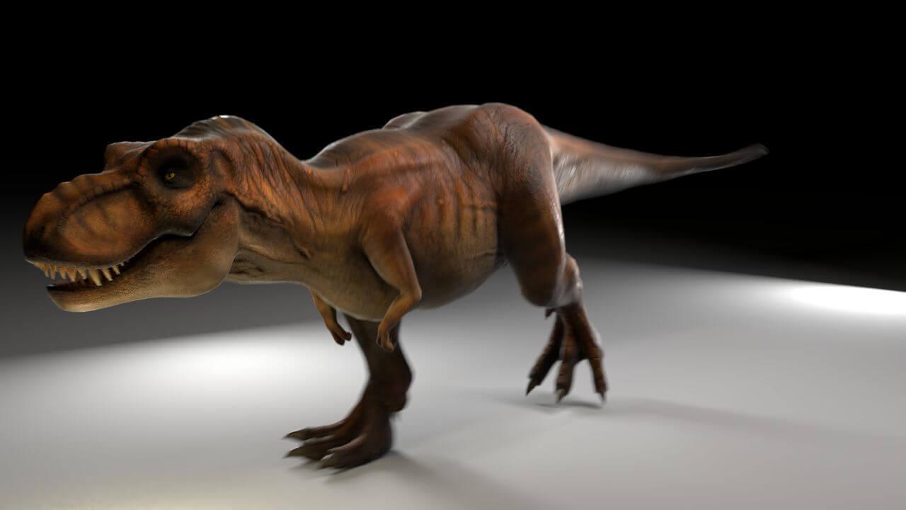 Tyrannosaurus rex 3d model tyrannosaurus rex altavistaventures Gallery