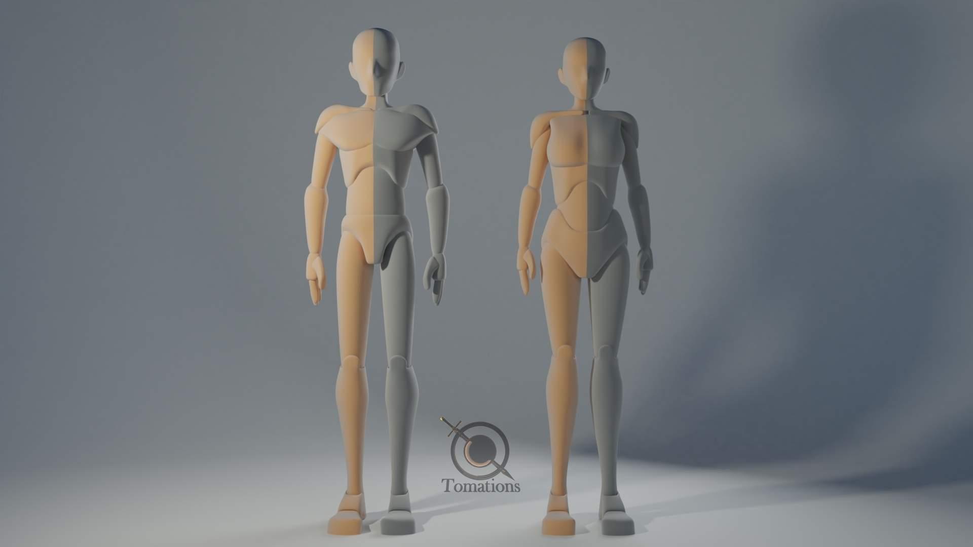 IK Rigged Dolls 3D Model